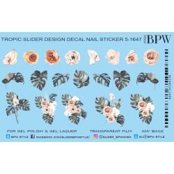 447  Flores 5-1647