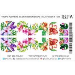 487 Flores tropicales 1-1433